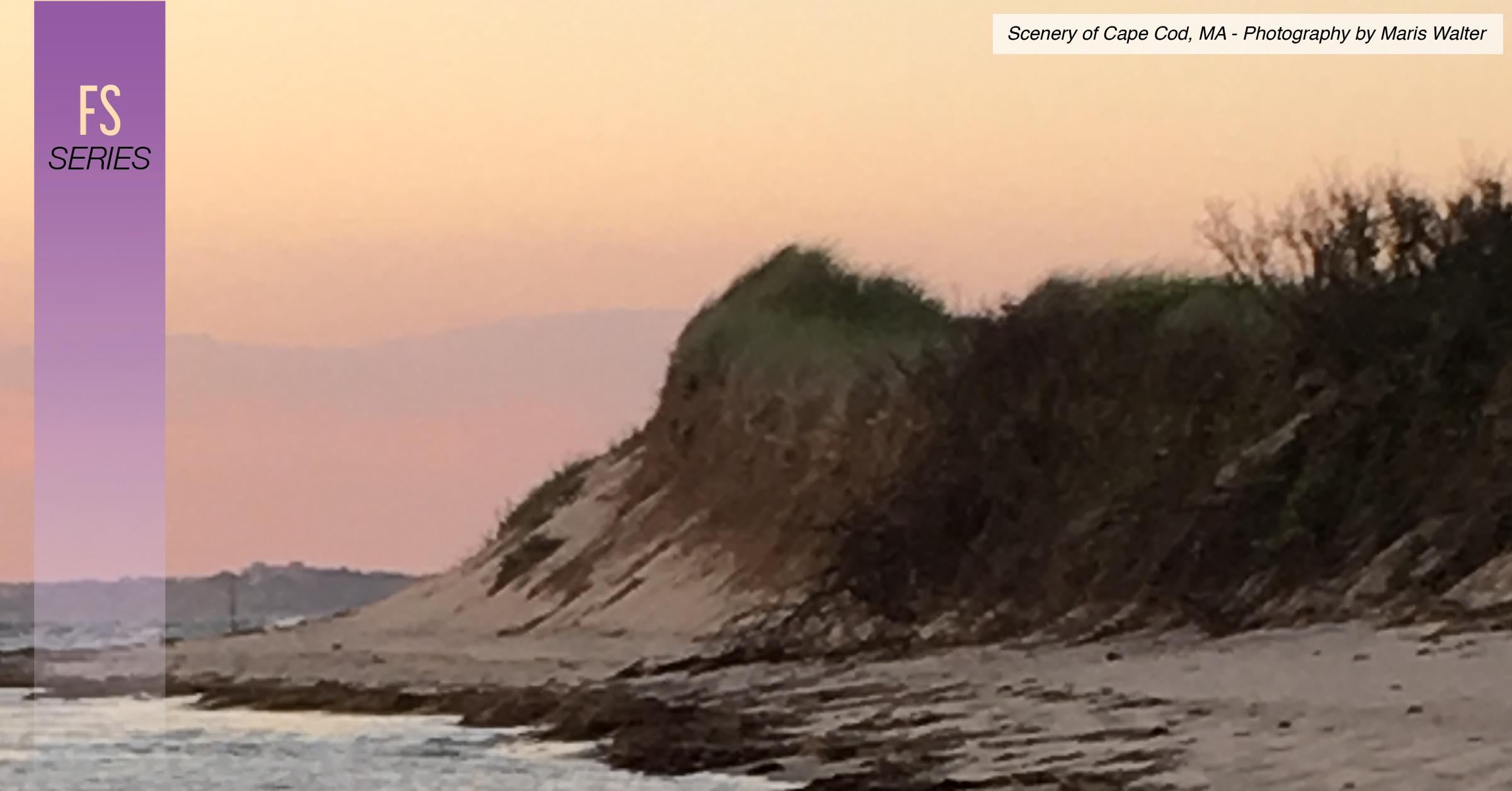 Beach Sunset Painting by Walter Maris